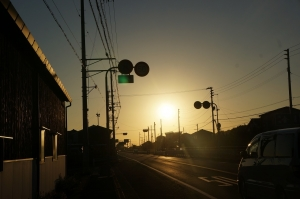 眩しい朝日33