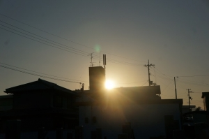 眩しい朝日2