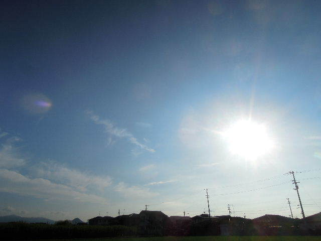ギラギラ太陽