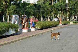 Elephant Parade Bangkok Dog