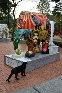 Elephant Parade Bangkok Cat