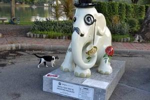 Elephant Parade Bangkok Cat