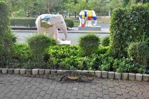 Elephant Parade Monitor Lizard