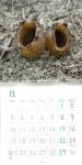 2018糟谷研究室カレンダー5