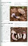 青森県産きのこ図鑑3