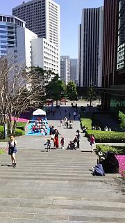 20170423芝桜(その8)
