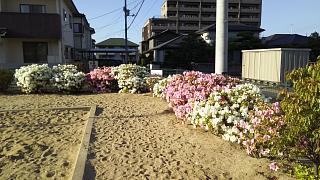 20170505徒歩帰宅(その1)