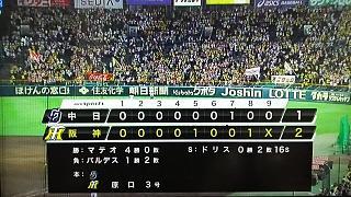 20170517阪神(その10)