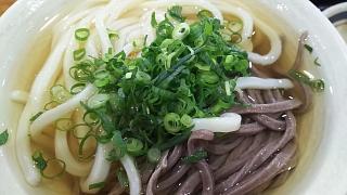 20170529エコぽん太(その2)