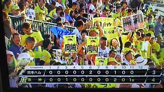 20170604タイガース(その3)