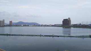 20170624大池(その1)