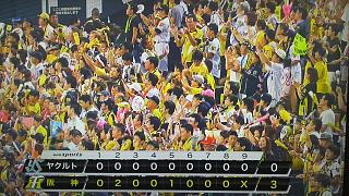 20170829阪神勝利(その8)