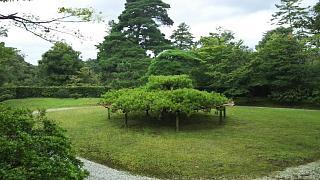 20170916修学院離宮(その33)