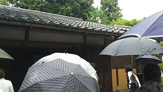 20170916修学院離宮(その51)