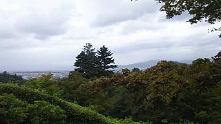 20170916修学院離宮(その74)