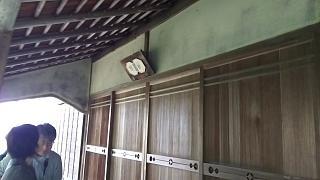 20170916修学院離宮(その87)