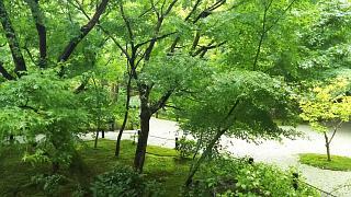 20190916圓光寺(その23)
