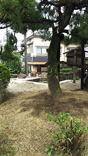 20170916下り松(その2)