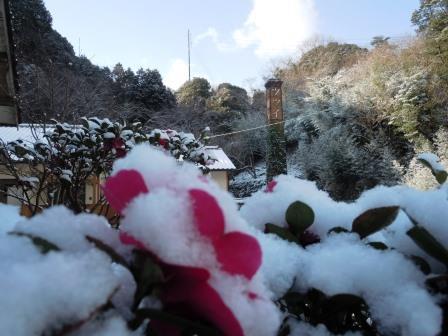 雪景色9(2018-01-24)