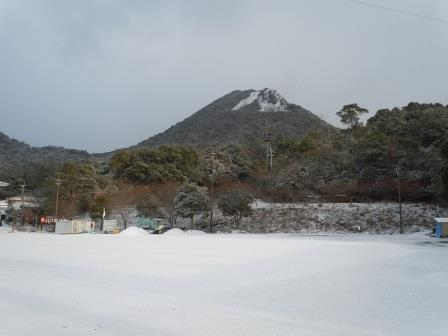 雪の朝4(2018-02-04)