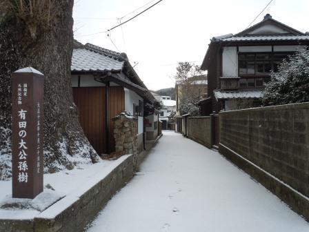 雪の朝10(2018-02-04)