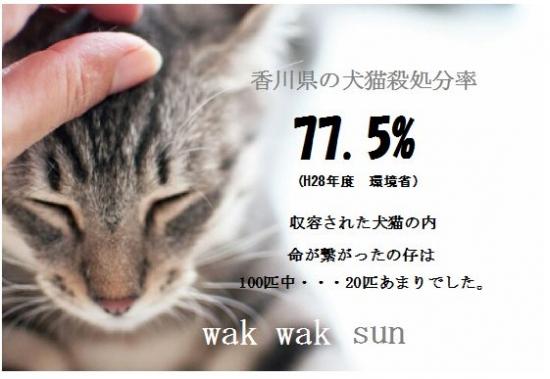 啓発用ポスター18-10-26