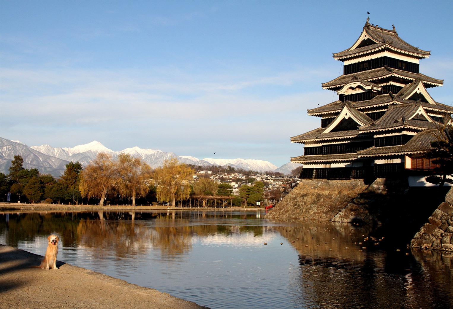 松本城とヒット(2)