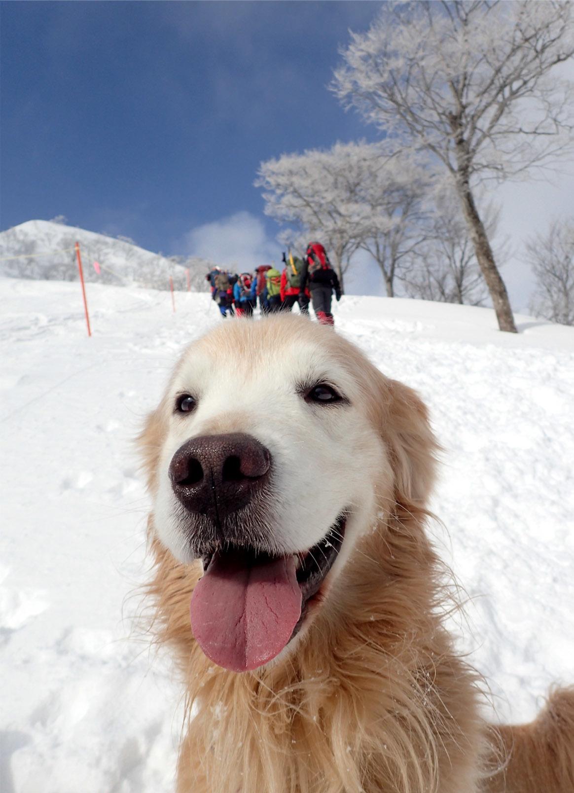 関東雪崩(9)