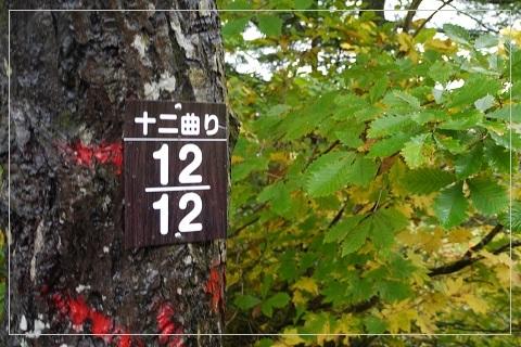 161009hiuchi6.jpg