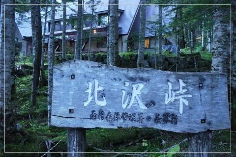 161016kurisawa1.jpg