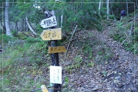 161016kurisawa5.jpg