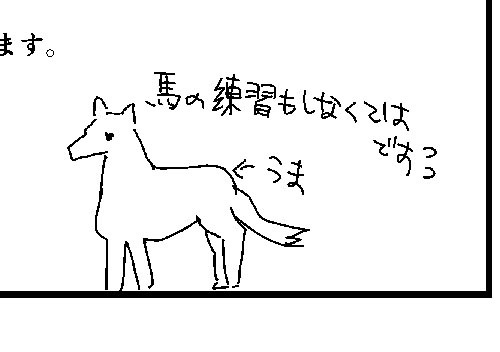 17t224.jpg