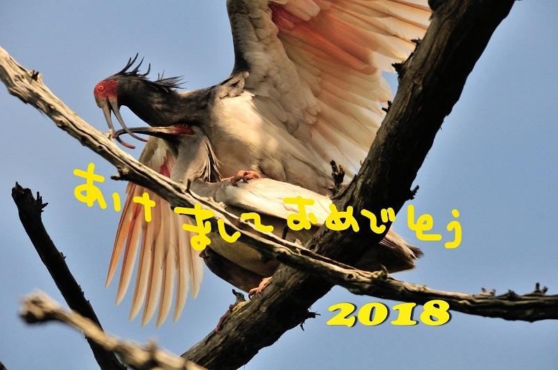 2018nenga_01.jpg