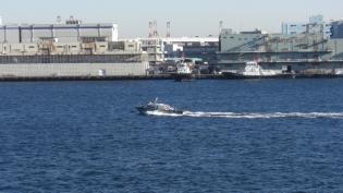横浜大桟橋。飛鳥Ⅱ、パシフィックビーナス6