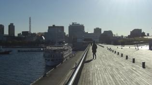 横浜大桟橋。飛鳥Ⅱ、パシフィックビーナス14