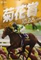 2017菊花賞ポスター2