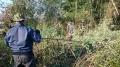 水路周辺竹伐採12月
