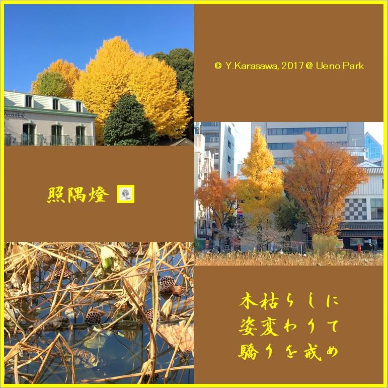 171229紅葉@上野公園LRG