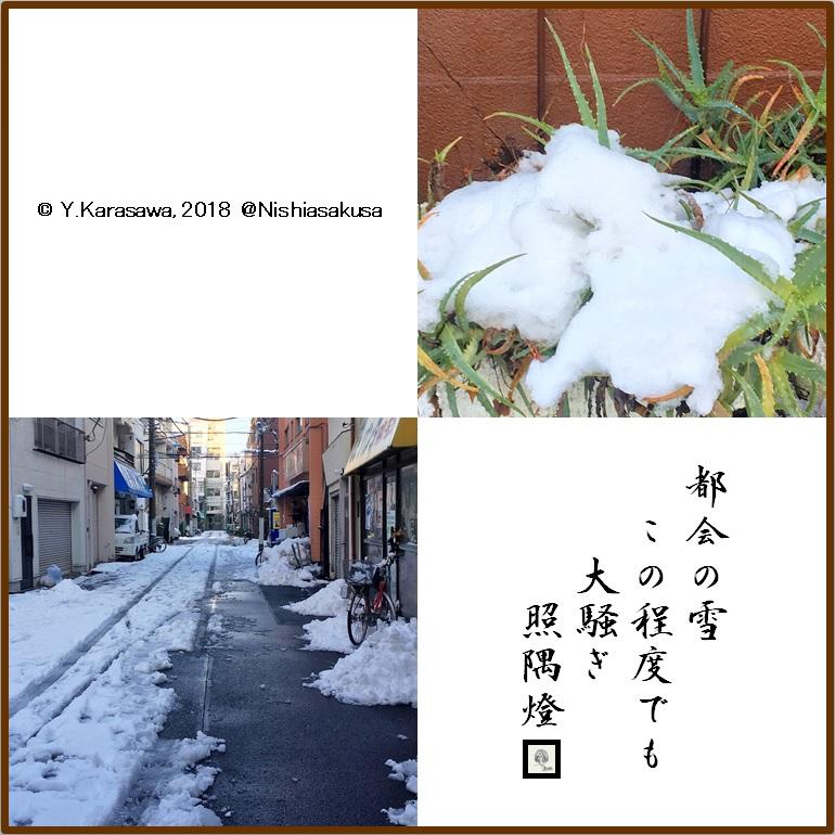 180123都会の雪LRG