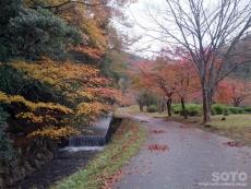 名田庄(公園)