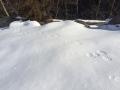 雪原の痕跡