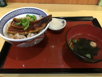 171119川常鰻丼