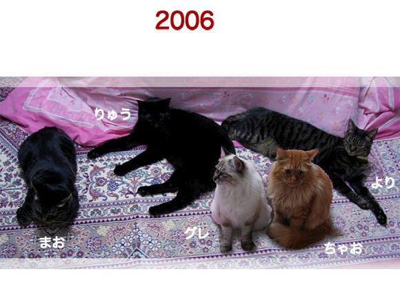 20061.jpg
