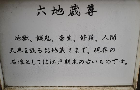 IMG_310.jpg