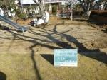 自走砂場清掃篩機 すなっぴー にて木の根を切断