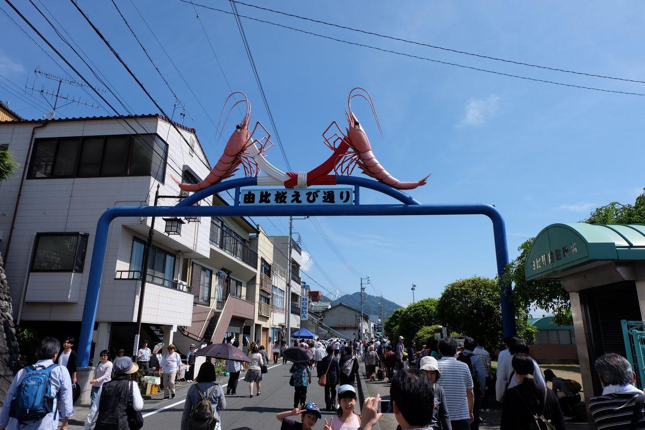 桜えび祭り2015-5