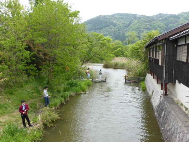 大溝の水辺景観4