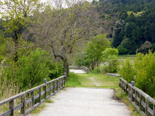 大溝の水辺景観5