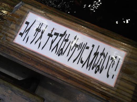 スーパーフィッシングとしまえん (15)
