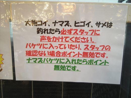 スーパーフィッシングとしまえん (14)